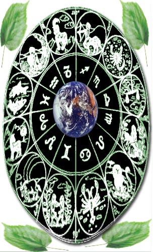 липа гороскоп друидов